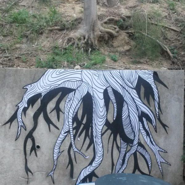 Nos forêts intérieures racines